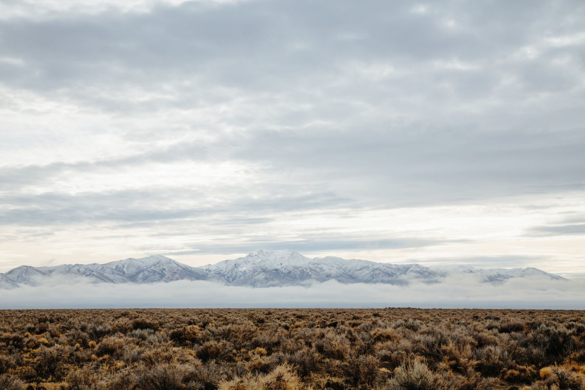 Nevada: The Start